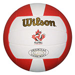 WILSON GOLD BEACH VOLLEYBALL
