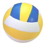 Rubber Volleyball Champion